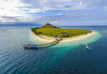 Foto: Raditya Maulana | The Coral Triangle